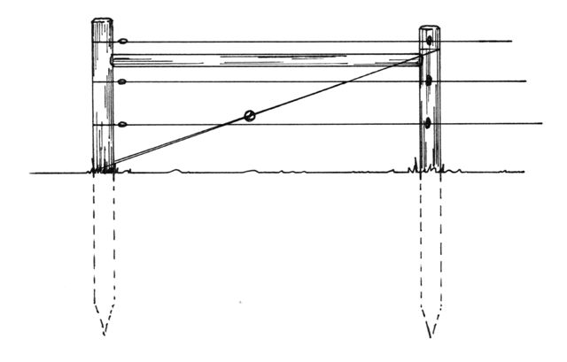 Parallellogram